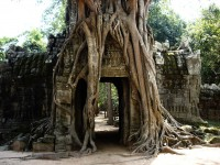 Angkor the ancient city in Cambodia