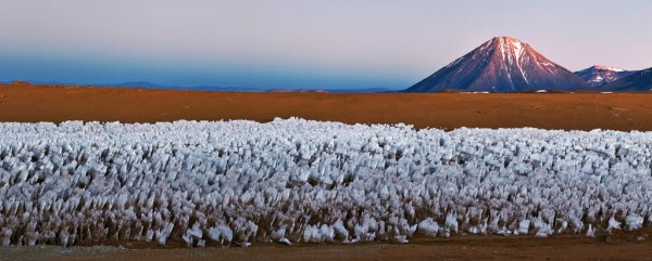Penitentes in the Dry Andes
