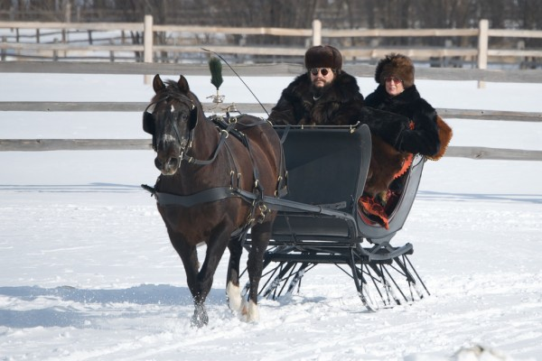 Traditional horse sleigh