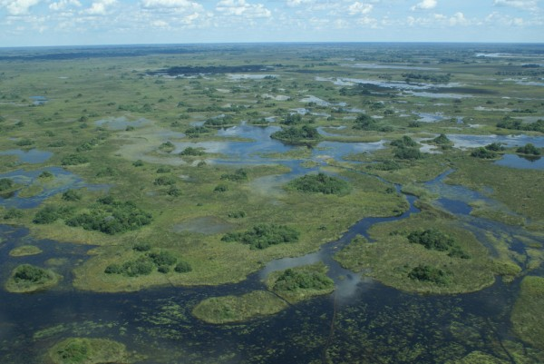 Okavango Delta view from the air