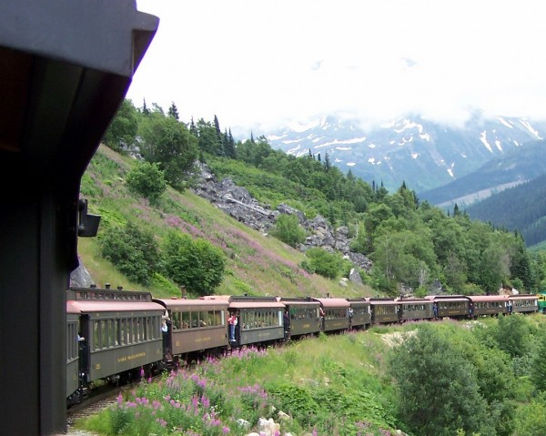 Alaska train ride through the wilderness