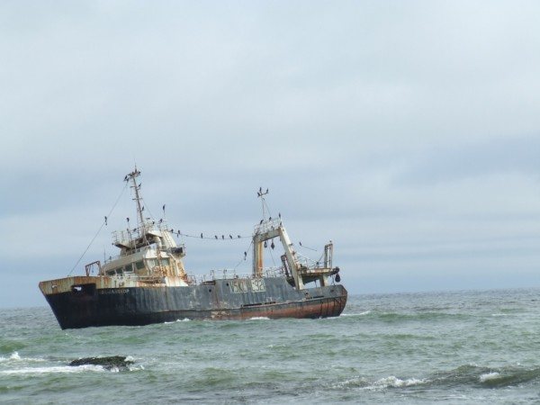 Wrack at Skeleton Coast